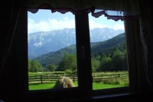 Urlaub in Rumänien